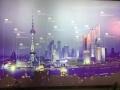 China 2014: 9