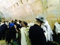 Israel 2014: 13